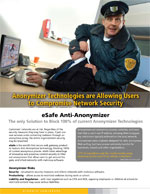 A security product promotional flyer